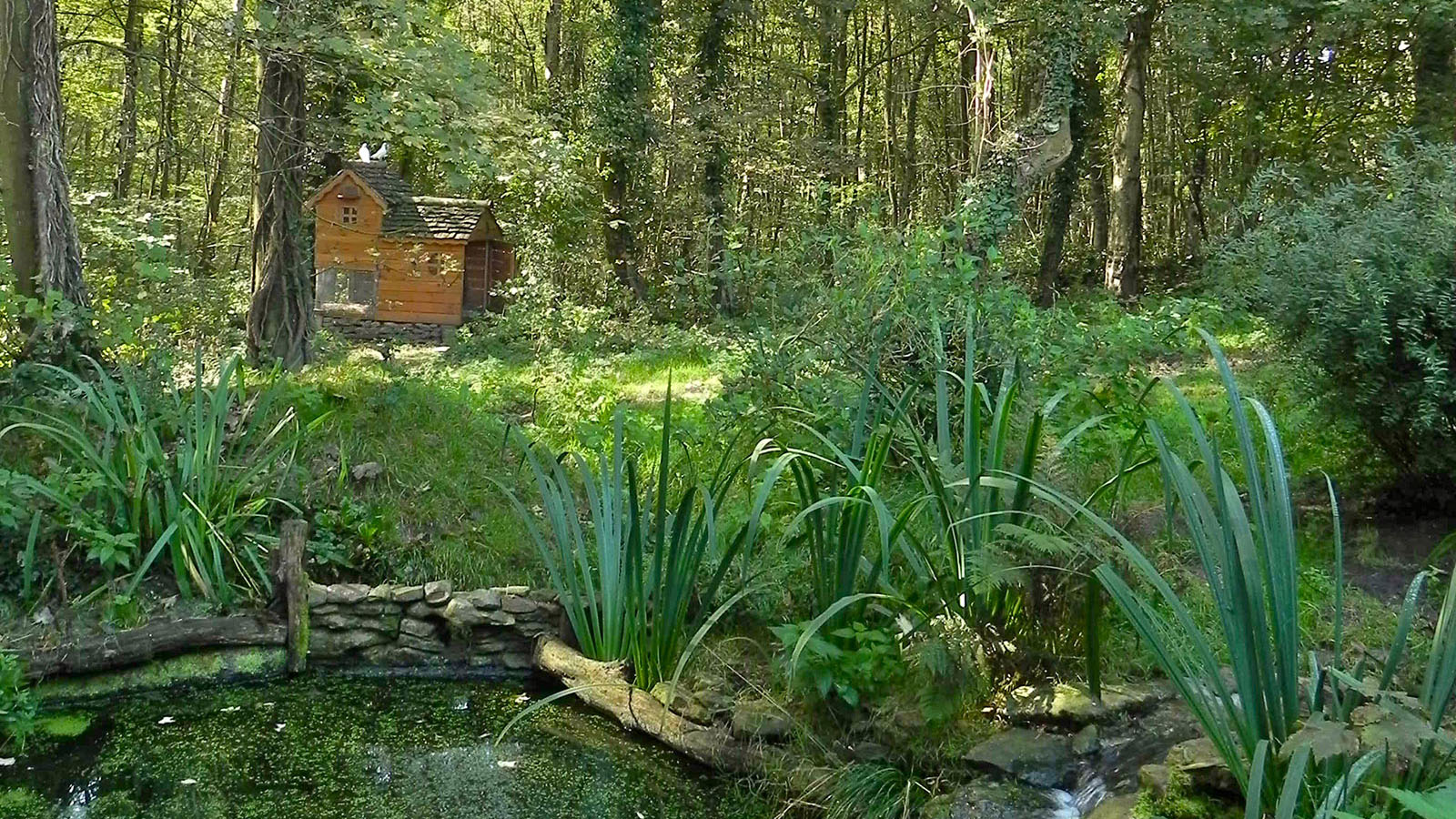 Gîte en forêt à Saint-Amand-les-Eaux dans le Nord